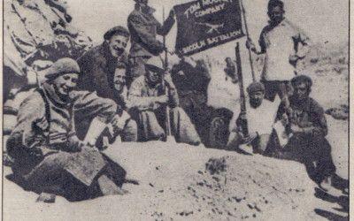 La Batalla del Jarama. Parte IV. El final de la batalla