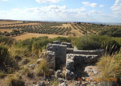 Posición fortificada nacional Jara Alta, defensas del Pingarrón