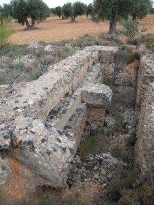 Puesto de escuadra para tiradores,entre olivares del Jarama