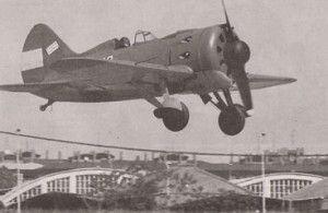 caza I-16 mosca